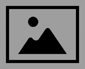 alt – オルト